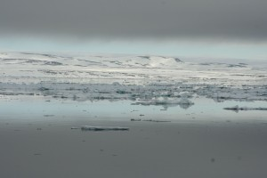 Highlight for Album: Svalbard dag 3