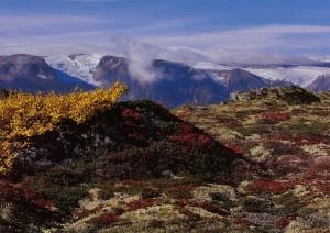 høstfarger i fjellet